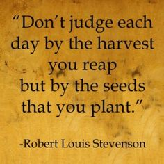 """Don't judge each day by the harvest you reap but by the seeds that you plant"" Robert Louis Stevenson"