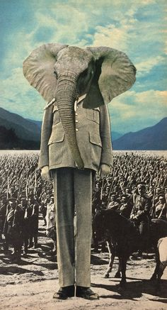 Elephant head. Collage. Leader with crowd behind them.