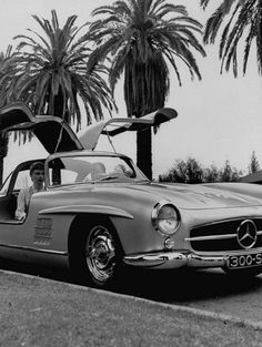 Fabulous Mercedes Gullwing Sports Car!  Great in black too.