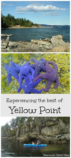 Did you know that Yellow Point, a small community located between Cedar and Ladysmith has some of the best kayaking spots in Nanaimo? Get out and explore Vancouver Island! Victoria Vancouver Island, Canadian Travel, Canadian Rockies, Visit Vancouver, Island Life, Thailand Travel, Kayaking, Travel Photos, Places To Visit