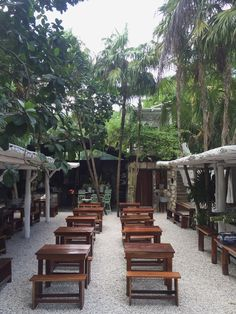 Tulum Travel Diary: The Jungle - Little Miss Notting Hill Outdoor Restaurant Design, Rustic Restaurant, Cafe Shop Design, Restaurant Interior Design, Cafe Bar, Rustic Cafe, Garden Cafe, Outdoor Cafe, Backyard
