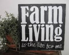 Eight Reasons You Must Have a Farmstead