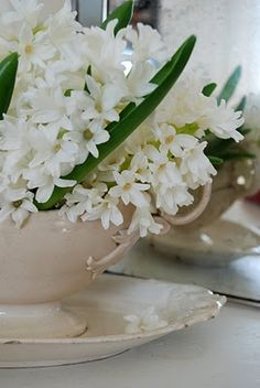 Gypsy Purple home. White Flowers, Beautiful Flowers, Simply Beautiful, White Hyacinth, Art Of Seduction, White Cottage, Farm Cottage, Flower Shower, Purple Home