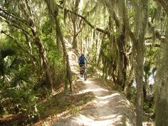 winter is the BEST time for bike trips in Florida -it's finally cool enough
