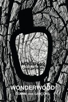 Anuncio del perfume Wonderwood