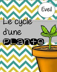 La classe de Laura: Cycle 2