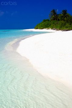 Tropical beach, Maldives by Sakis Papadopoulos