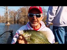 51 Best Reelfoot Lake images in 2019 | Tennessee, Crappie Fishing