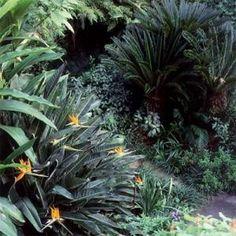 New Orleans Garden — Mary Cooper | Garden Design