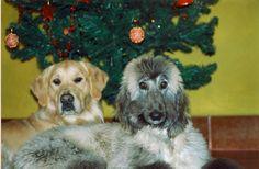 Navidad del 98 Cuper y Adur