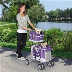 Double Decker Pet Stroller - Dog Stroller - Strollers Posh Puppy Boutique