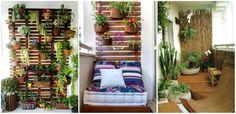 Plante de apartament care transforma incaperea intr-un loc de vis - http://ideipentrucasa.ro/plante-de-apartament-care-transforma-incaperea-intr-un-loc-de-vis/