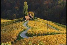 Concurso premia as melhores fotos de jardins do mundo - BBC - UOL Notícias