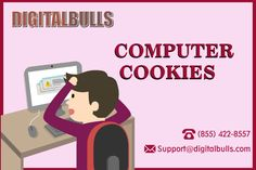 Remove Cookies from Computer http://www.digitalbulls.com/computer-security/support-for-computer-cookies.php