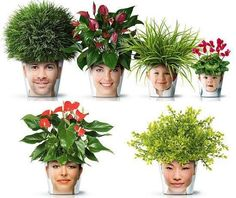 Mother's Day / Father's Day -- create a planter by decoupaging a head shot of the loved one on the pot then growing a lovely plant for the hair!  :)