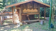 Chicken coop made out of old camper and sided with old mossy slabs from sawing old cedar logs