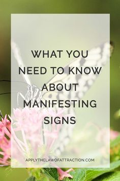 What to know if you're seeing signs that your desire is manifesting? Learn what you need to know about manifesting signs that the law of attraction is working.