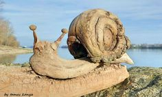 Sculptures Made From The Wood That Has Been Washed By The Water :http://wwideas.com/2016/01/sculptures-made-from-the-wood-that-has-been-washed-by-the-water/