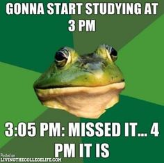 Actually my life