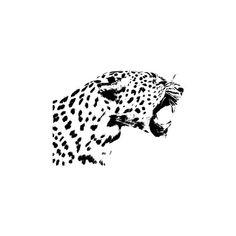 Big Cat Tattoo, Tiger Tattoo, Jaguar Tattoo, Leopard Tattoos, Stencils For Wood Signs, Cat Logo, Monochrom, Mini Tattoos, Big Cats