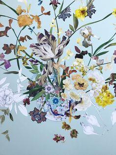 Artist Spotlight Series: Marcy Cook