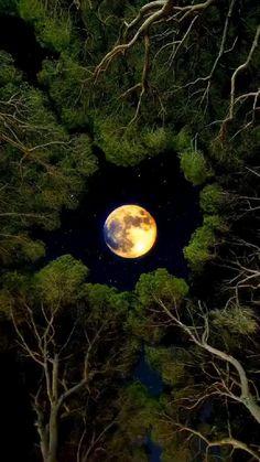 Beautiful Photos Of Nature, Beautiful Nature Wallpaper, Beautiful Moon, Amazing Nature, Aesthetic Photography Nature, Moon Photography, Amazing Photography, Night Sky Photos, Night Sky Wallpaper
