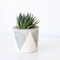 We love homewares that have a dual use - like our concrete pot soy candle collab with @stone.and.folk. Once you've burnt your way through the candle give it a wipe out and you've got yourself a rad concrete planter! Available online at our store (link in profile).  @stone.and.folk by candiandco