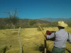 """Entre La Junta y Patillal sobre lomas y sabanas, hoy canto versos del alma cuando empiezo a recordar...""""Diomedes Diaz"""" Valledupar Colombia Cowboy Hats, Verses"""
