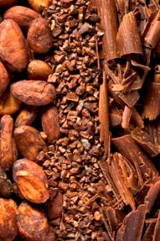 We source cacao from the Dominican Republic. Think of all the delicious chocolate this can make!