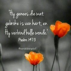 Uplifting Quotes, Inspirational Quotes, Afrikaans Quotes, Special Words, Prayer Room, Scripture Verses, Praise God, Bible Verses Quotes, Trust God
