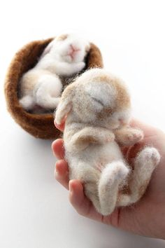 READY TO SHIP! Rabbits/ bunnies are animals that I just love to make! These two little babies sleep in a nest of of wool. The bunnies are each life size babies that fit in your hand. They are not attached to each other or the nest and can be taken out. But a warning, much handling will continue to felt the wool and you will loose the fluffy, soft appearance over time. The wool covering these babes is super, soft alpaca. The nest material is sheep wool. I needle felted these two over a ...