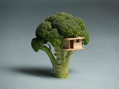 small world Sustainable Living 'Broccoli House' sustainability art architecture tree house miniture sculpture vegetable Top Photos, Image Tumblr, Food Sculpture, Creative Food Art, Creative People, Creative Artwork, Creative Things, Creative Ideas, Fotografia Macro