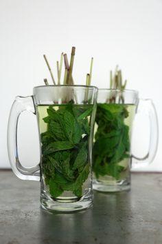 Home grown mint tea
