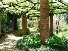 A garden space in Italy - giant brick column holding up arbors filled with vines. Shade plant underneath.