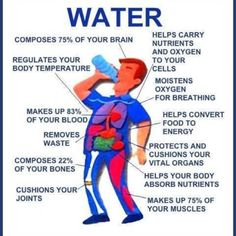 This pin demonstrates the importance of pure water for the body