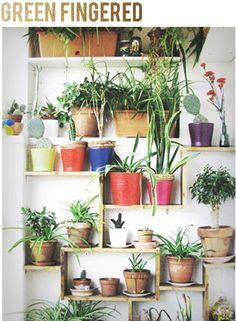 plant+wall_2.jpg (430×586)