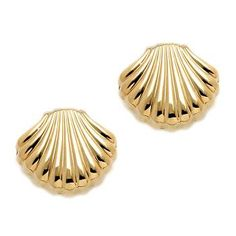 14kt Yellow Gold Scallop Clutch/Post Shell Earrings