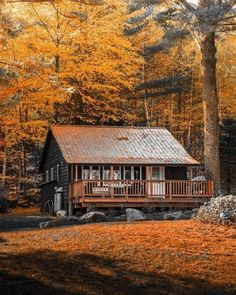 cabinsdaily:Cabin of the day