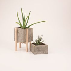 Concrescence Concrete Planters by Vakodesign