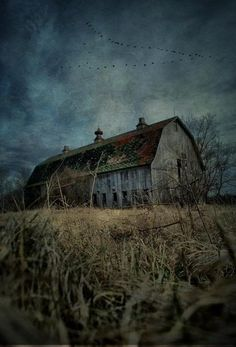 ( source )   A stranger came by the other day  with an offer that set me to thinking.  He wanted to buy the old barn that sits out by t...