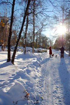 Hoppas vintern blir såhär fin!