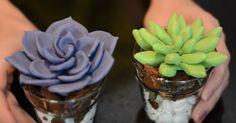 Cactus, Clay Pot Crafts, Pasta, Clay Pots, Biscuits, Succulents, Creative, Flowers, Diy