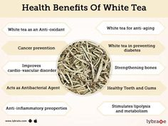 White tea is a completely different variety of tea that can transcend the health aspects provided by our regular tea. Health benefits of white tea include. White Tea Benefits, Effects Of Green Tea, Best Matcha Tea, Best Herbal Tea, Calendula Benefits, Prevent Diabetes, Healthy Teeth, Healing Herbs, Health Tips