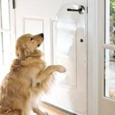 Door Protector From Dog, Advertising Pictures, Vinyl Doors, Pet Door, Dog Houses, House Dog, Dog Fence, Buy Pets, Large Dogs