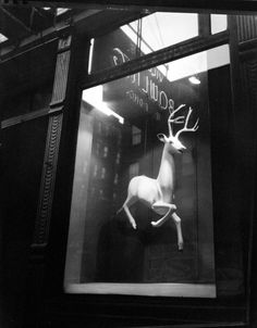Find artworks for sale by Berenice Abbott on artnet. Browse through a large collection of artworks by Berenice Abbott and in-depth market information. Berenice Abbott, Classic Photographers, Female Photographers, Window Photography, Street Photography, Bleecker Street, Brassai, Image Sheet, Public
