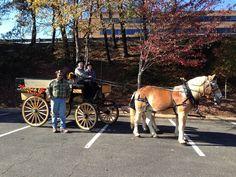 Shenandoah Carriage Company. Fall Rides