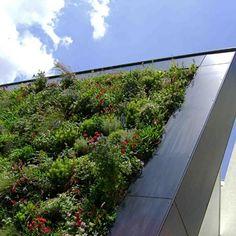 On aime le toit vert en pente