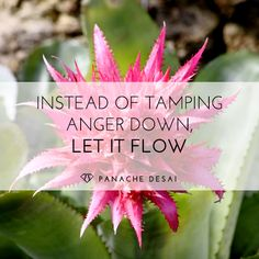 Anger is a great energy. If enough people on the planet get angry about something, it often changes.