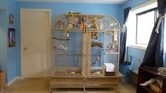 Discount Bird Toys : 19 best foraging toys images on pinterest parrots pet bird cage
