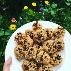 Sunday Cookie Day: oatmeal, bananas, goji berries and chocolate nibs